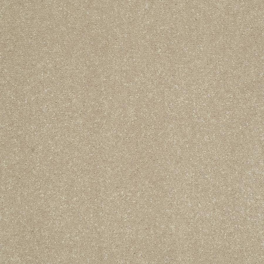 Shaw 15-ft W x Cut-to-Length Cream/Beige/Almond Textured Interior Carpet
