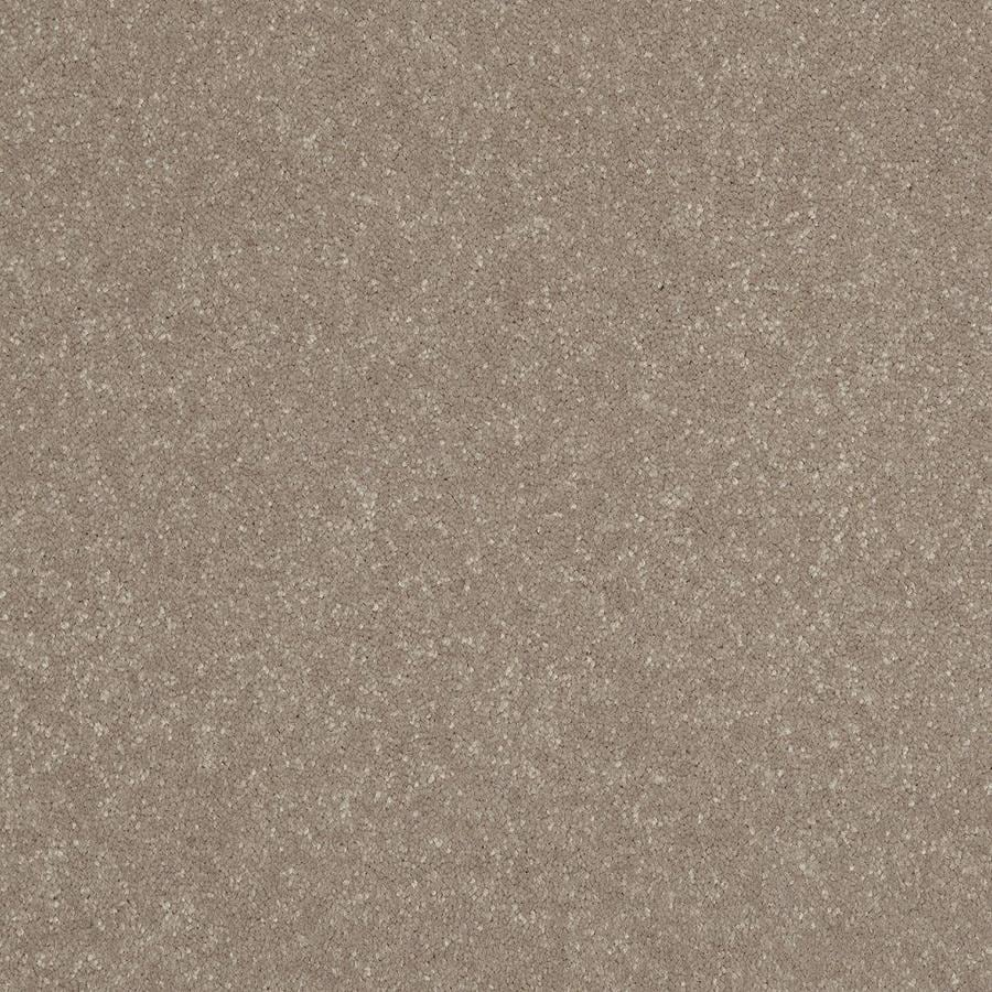 Shaw Cream Textured Indoor Carpet