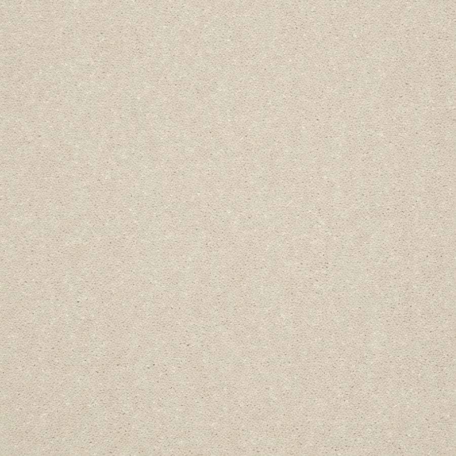 Shaw Text (254) Cream/Beige/Almond Textured Interior Carpet