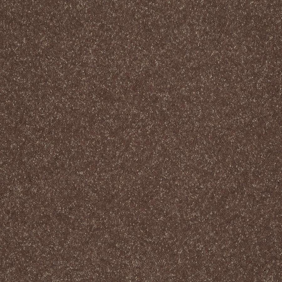 Shaw Tan Textured Indoor Carpet