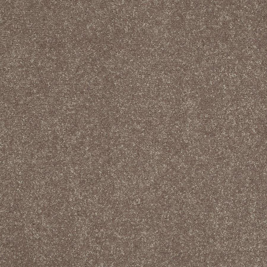 Shaw 12-ft W x Cut-to-Length Brown/Tan Textured Interior Carpet