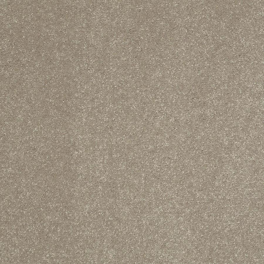 Shaw Cream/Beige/Almond Textured Interior Carpet