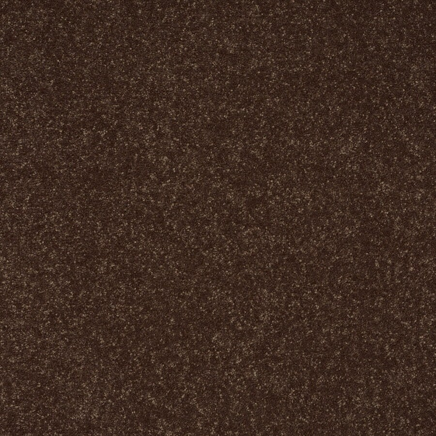 Shaw Text (254) Raisin Textured Interior Carpet