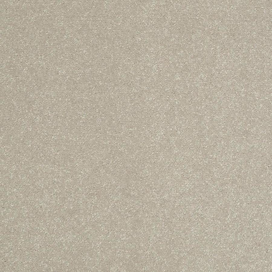Shaw 12-ft W x Cut-to-Length Cream/Beige/Almond Textured Interior Carpet
