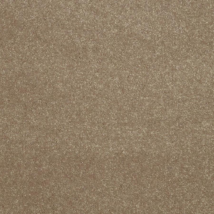 Shaw Brown/Tan Textured Interior Carpet