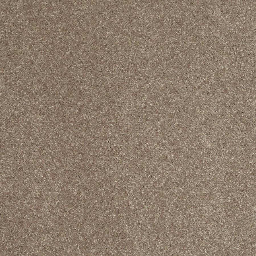 Shaw Brown/Tan Textured Interior Carpet