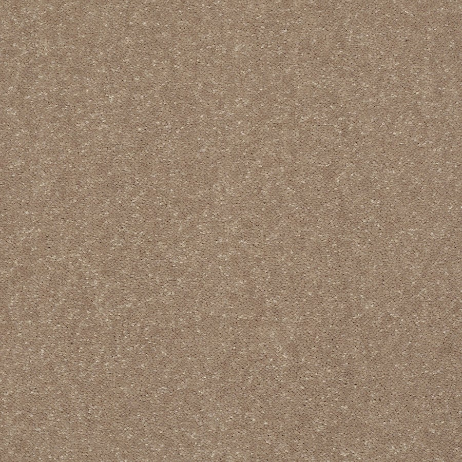 Shaw Cornerstone Collection Brown Textured Indoor Carpet