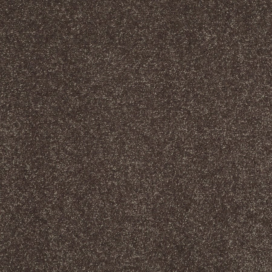 Shaw Cornerstone Collection Brown/Tan Textured Interior Carpet