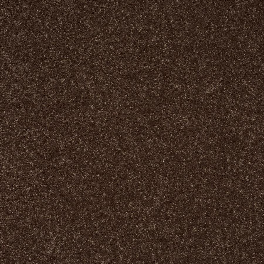 Shaw 15-ft W x Cut-to-Length Brown/Tan Textured Interior Carpet