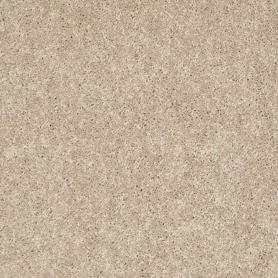 cream carpet texture. Shaw 7L52800107 Cream Textured Indoor Carpet Texture R