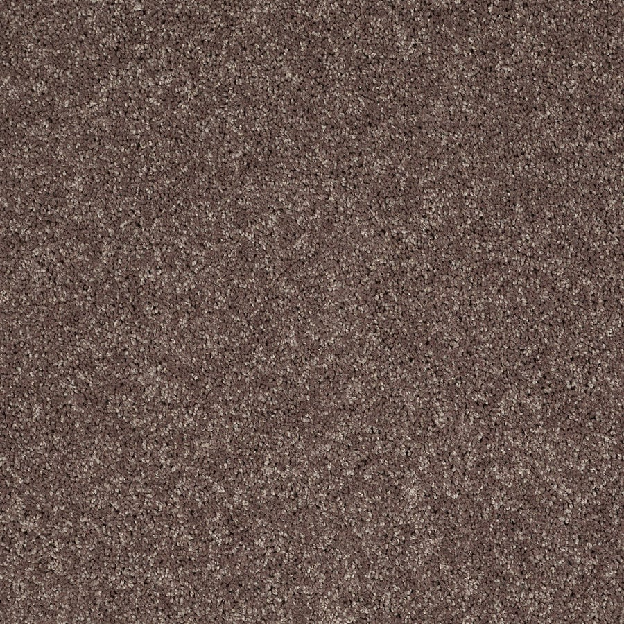 Shaw 7L52800703 Brown Textured Indoor Carpet