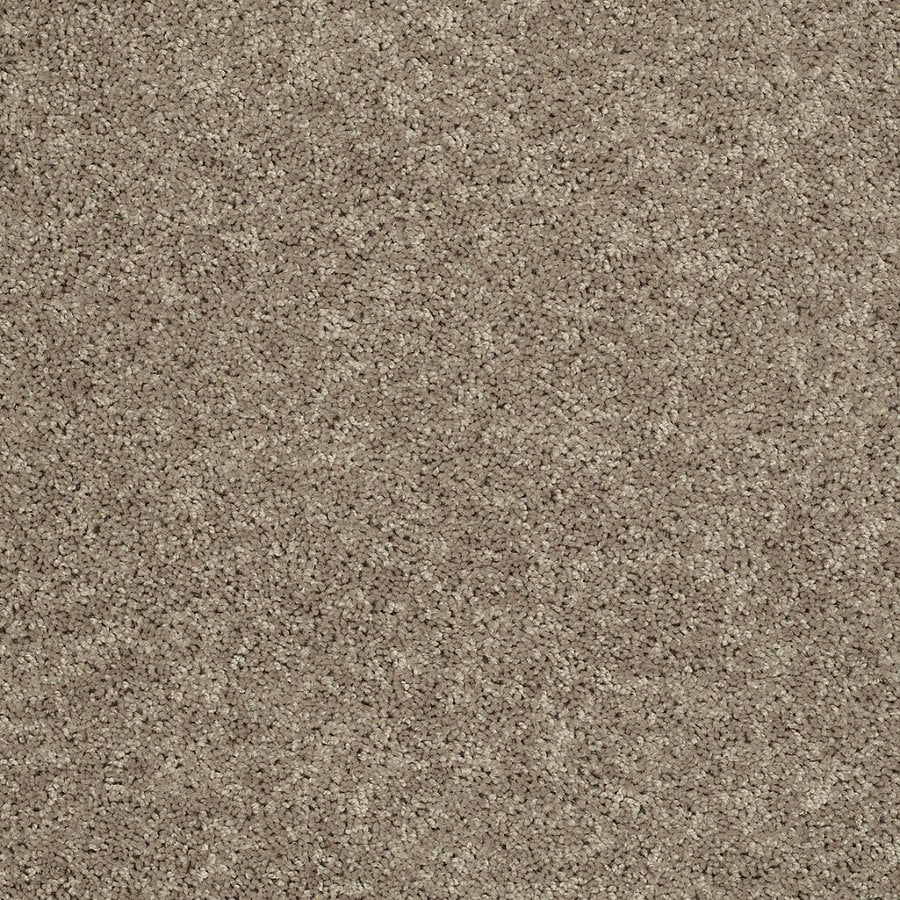 STAINMASTER Essentials Allegiance - S Green Textured Indoor Carpet