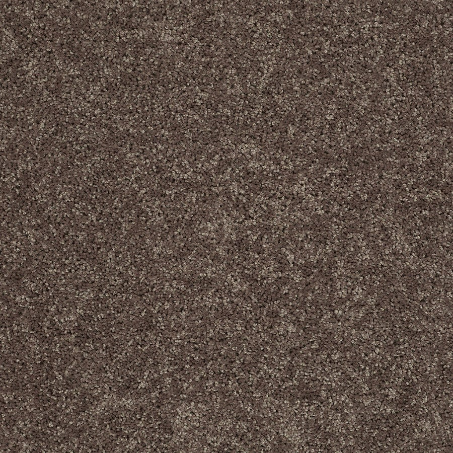 STAINMASTER Essentials Allegiance S 12-ft W x Cut-to-Length Brown/Tan Textured Interior Carpet
