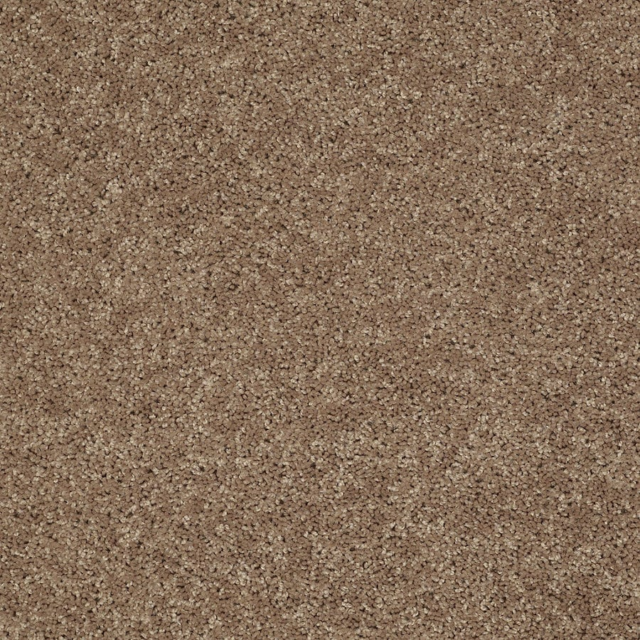STAINMASTER Essentials Allegiance- S Brown/Tan Textured Interior Carpet