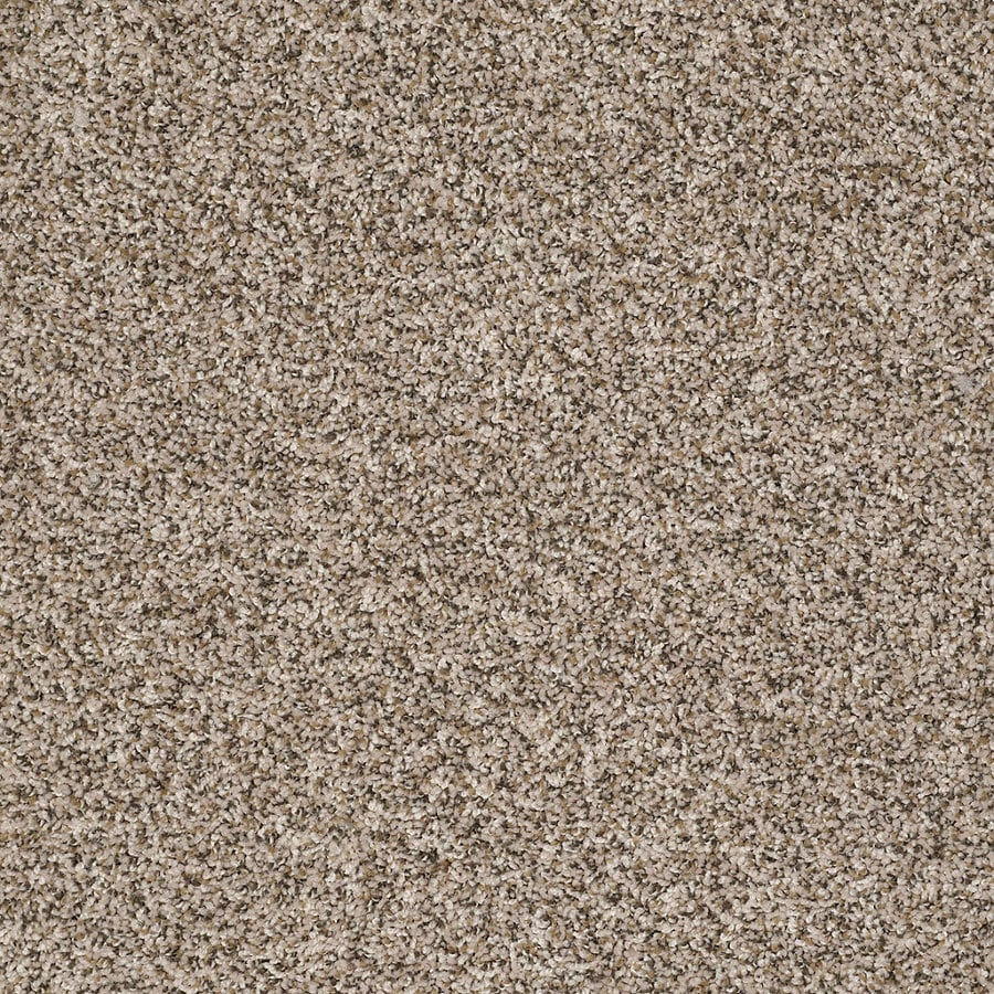STAINMASTER Essentials Allegiance - B Cream/Beige/Almond Textured Indoor Carpet