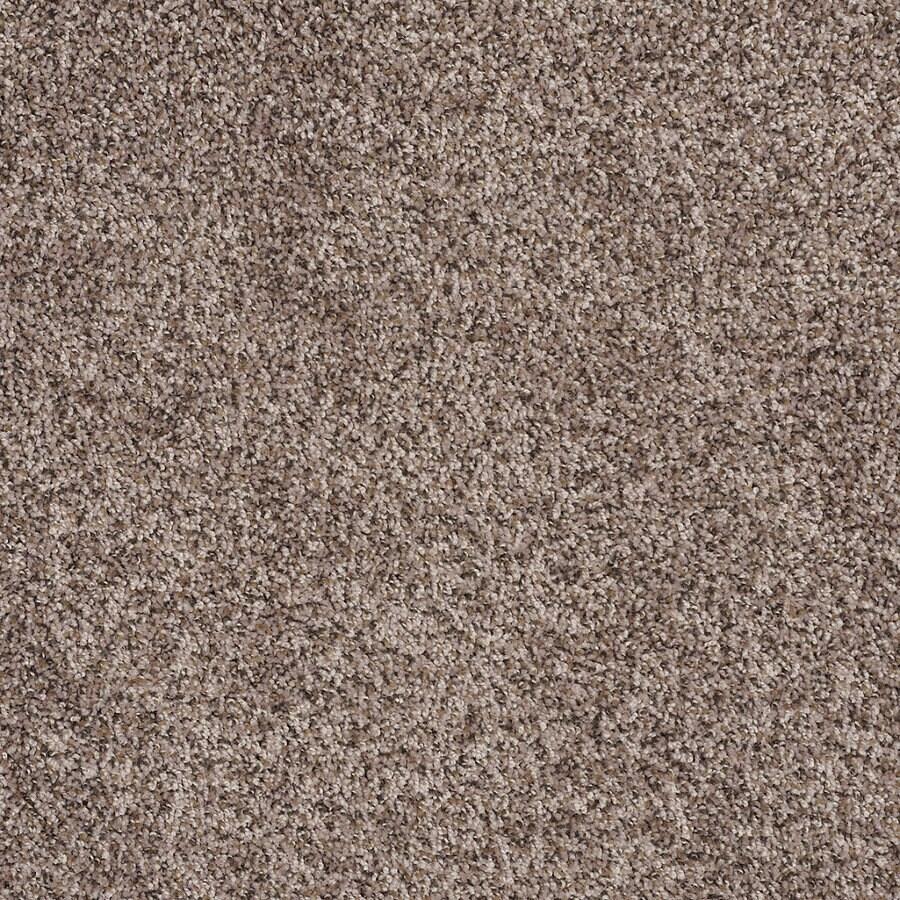 STAINMASTER Essentials Allegiance - B Brown/Tan Textured Indoor Carpet