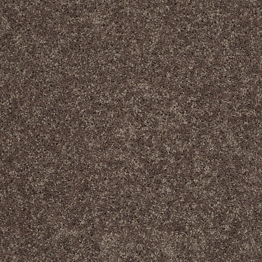 STAINMASTER Essentials Stock Carpet Brown/Tan Textured Interior Carpet