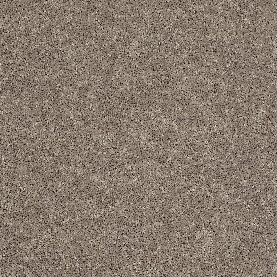 Shop Stainmaster Essentials Stock Carpet Brown Tan