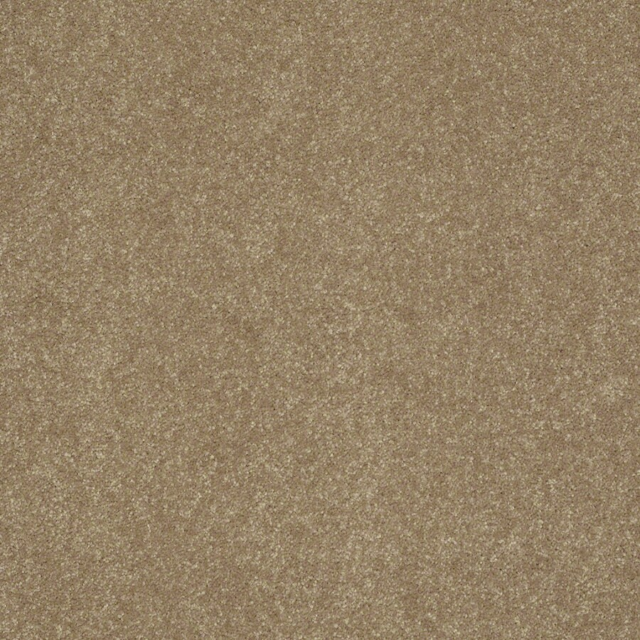 Shaw Cornerstone 12-ft W Cornsilk Textured Interior Carpet
