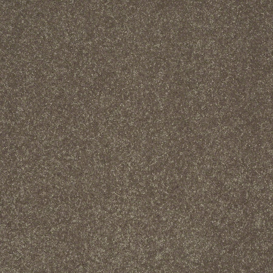 Shaw Cornerstone 12-ft W Lily Pad Textured Interior Carpet