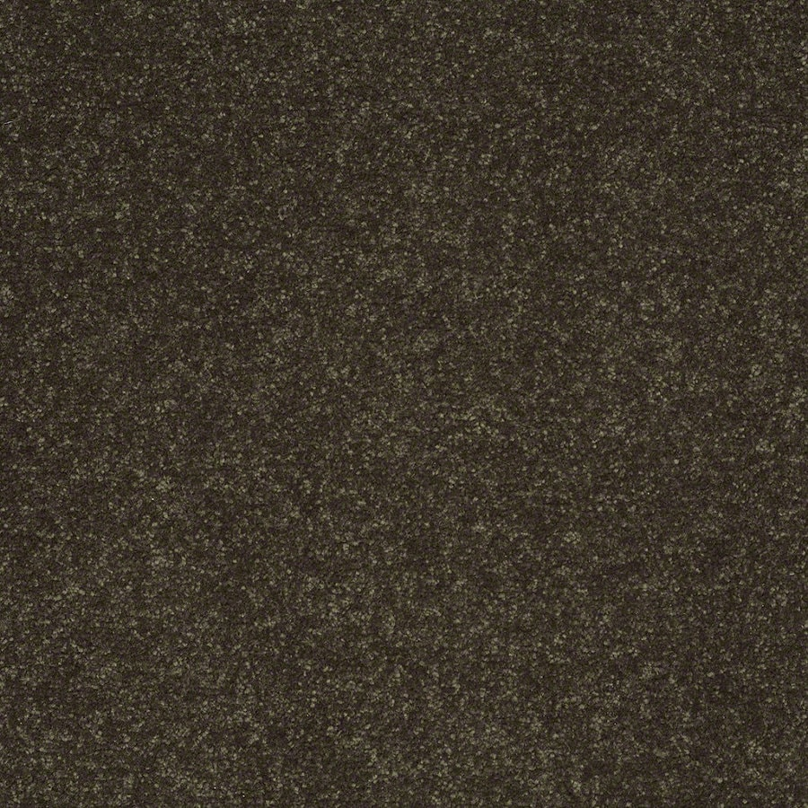 Shaw Cornerstone Silken Moss Textured Indoor Carpet