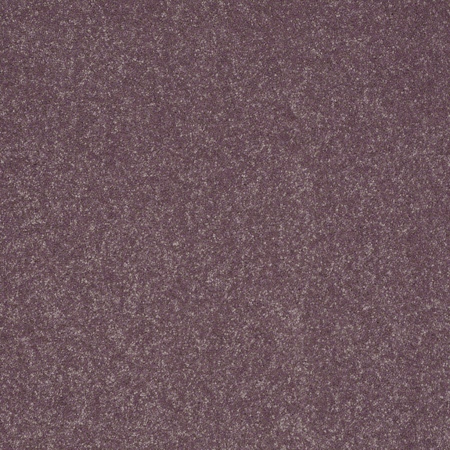 Shaw Cornerstone 12-ft W Mulberry Textured Interior Carpet