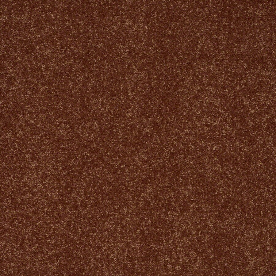 Shaw Cornerstone 15-ft W Copper Kettle Textured Interior Carpet