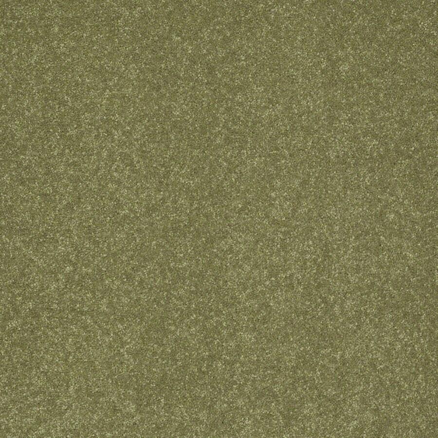 Shaw Cornerstone 12-ft W Citrus Burst Textured Interior Carpet