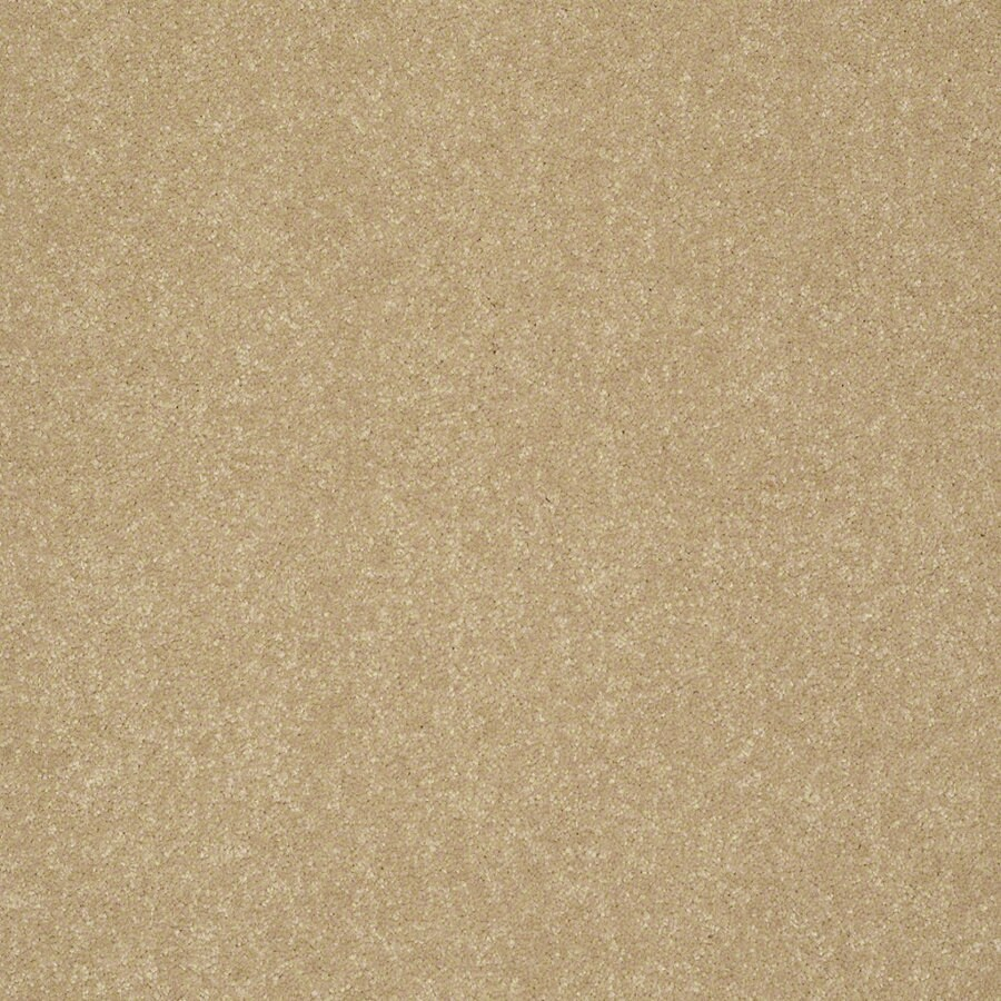 Shaw Cornerstone 15-ft W Mustard Seed Textured Interior Carpet