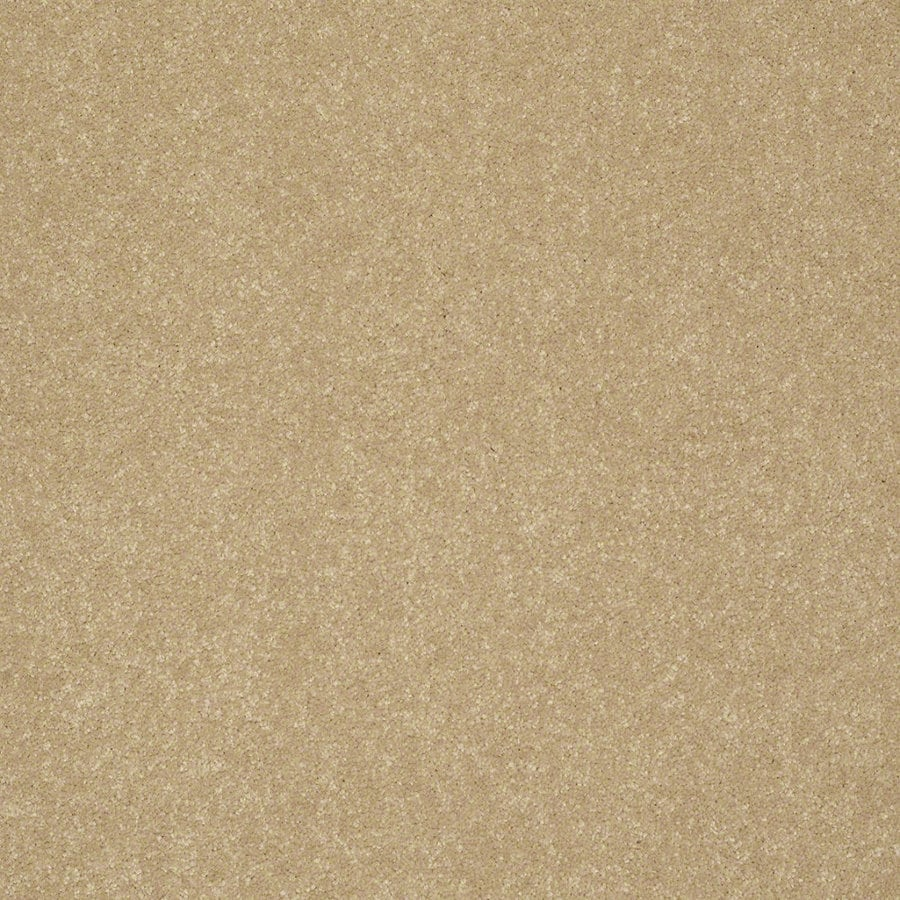 Shaw Cornerstone 12-ft W Mustard Seed Textured Interior Carpet