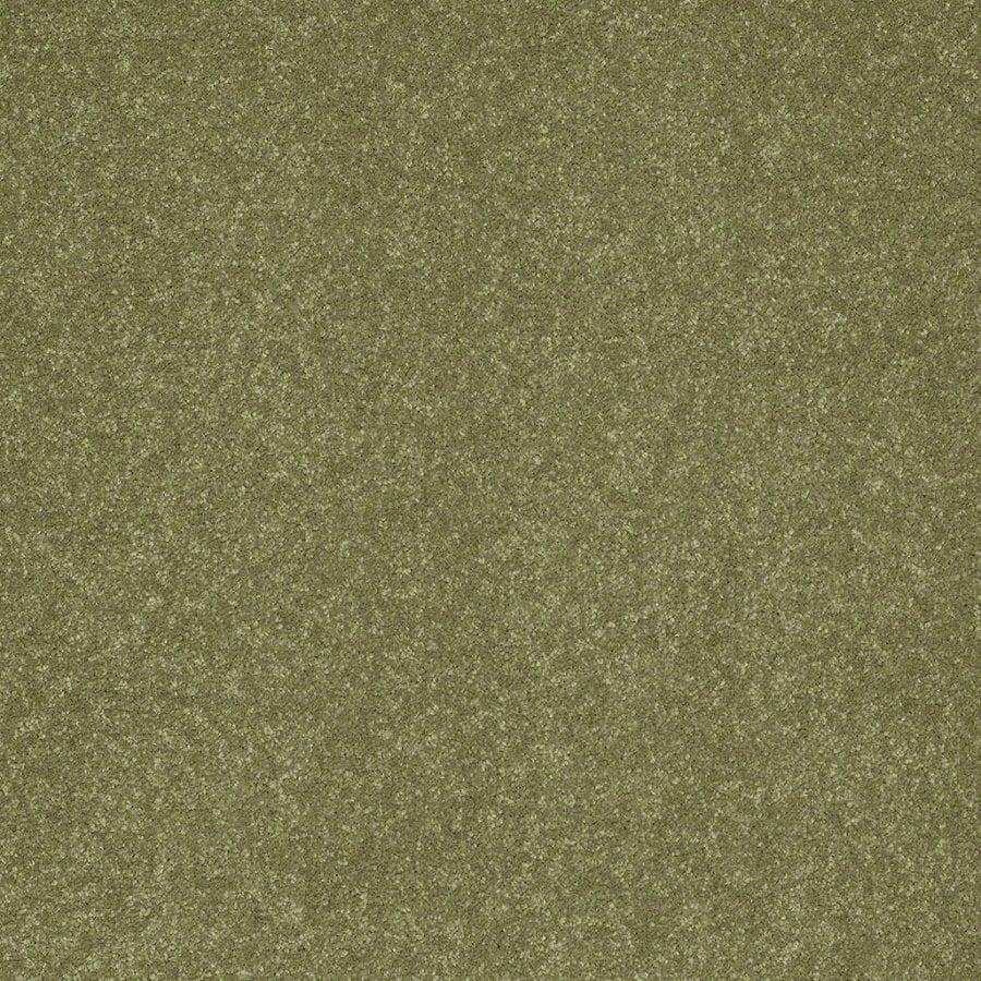 Shaw Cornerstone Citrus Burst Textured Indoor Carpet