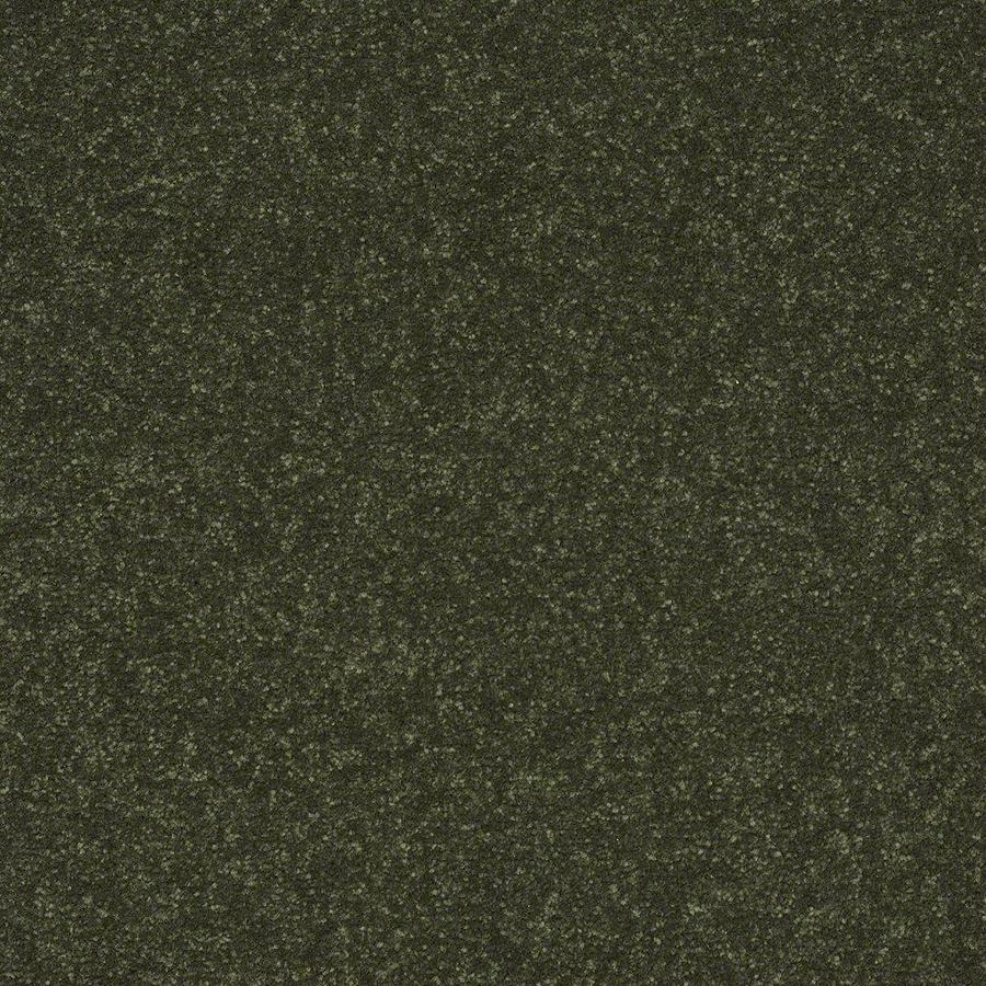 Shaw 12-ft W x Cut-to-Length Passion Vine Textured Interior Carpet