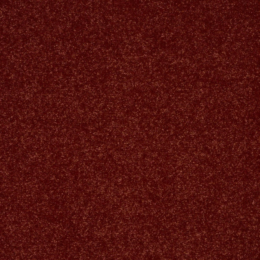 Shaw Cornerstone 12-ft W Warm Sienna Textured Interior Carpet