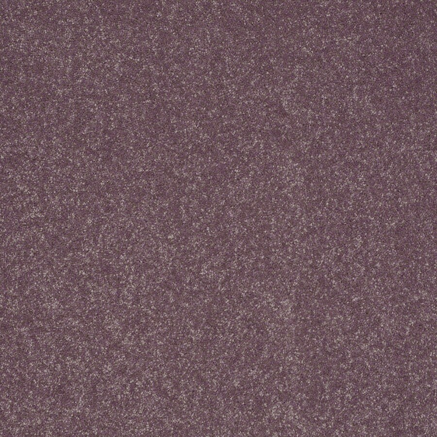 Shaw Cornerstone Mulberry Textured Indoor Carpet