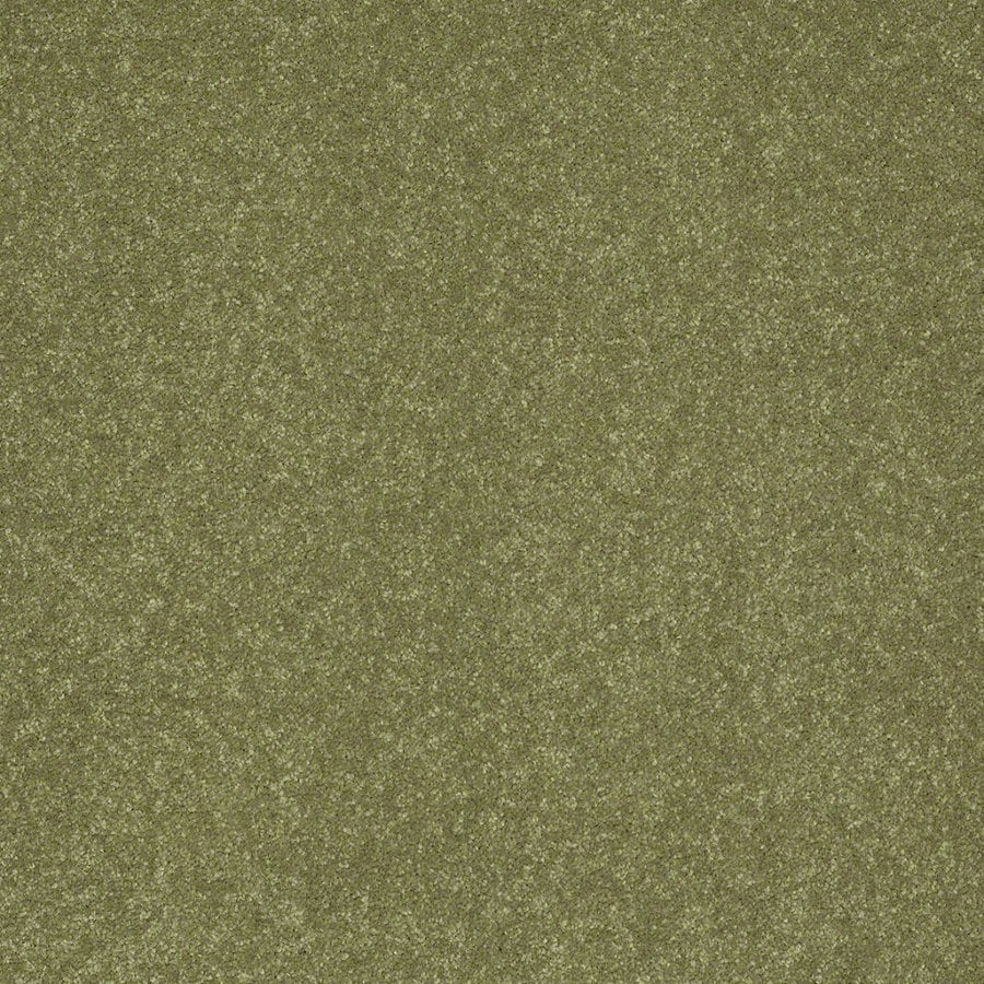 Shaw Cornerstone Citrus Burst Textured Interior Carpet