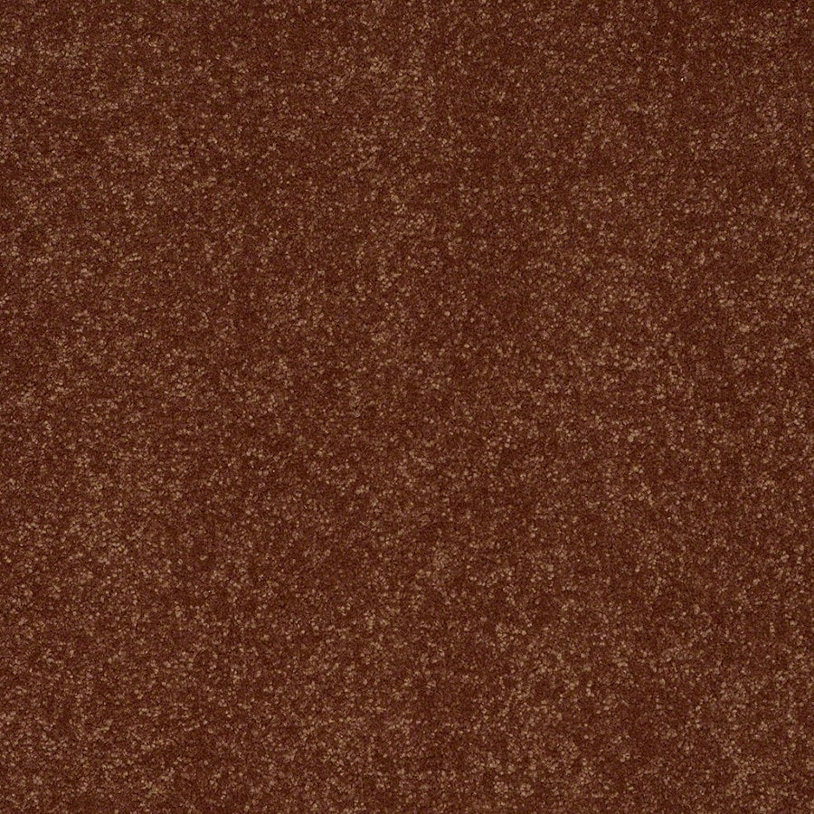 Shaw Cornerstone Copper Kettle Textured Indoor Carpet