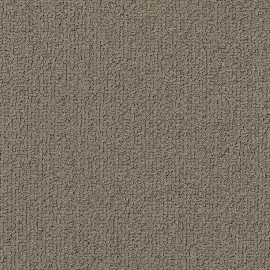 Shaw Commercial Light Taupe Berber Indoor Carpet