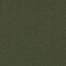 Shop Shaw Accentuate Bl Cactus Berber Loop Interior Carpet