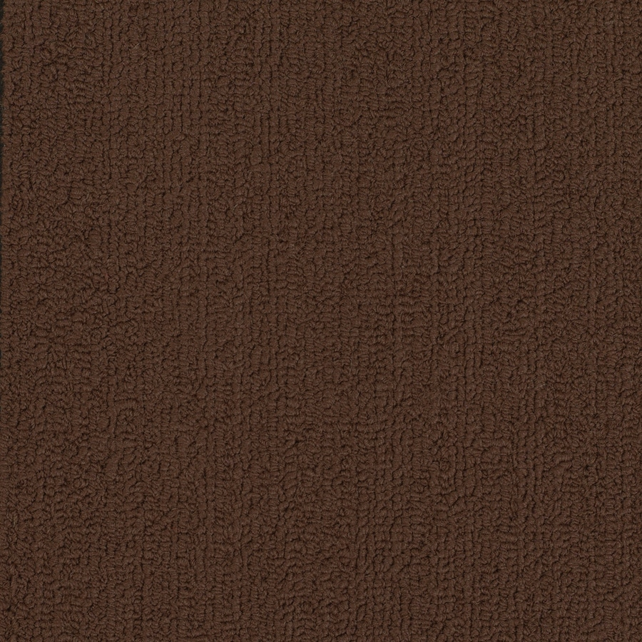 Shaw Commercial Chocolate Berber Indoor Carpet