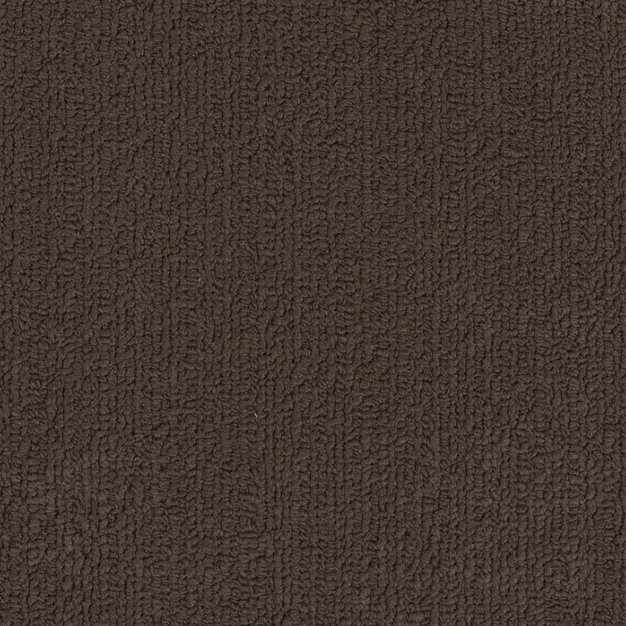 Shaw Accentuate BL Coffee Berber/Loop Interior Carpet