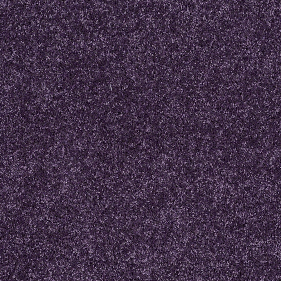 Shaw Candyland Grape Jelly Textured Interior Carpet