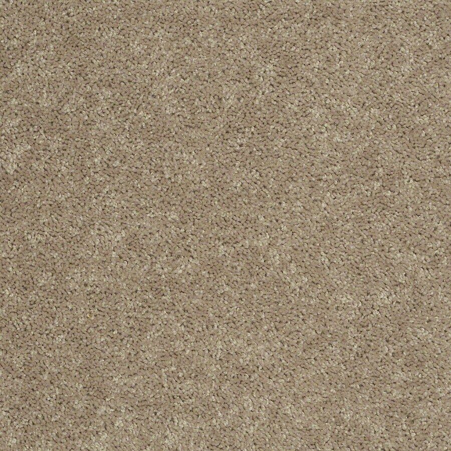 Shaw Cornerstone Tassel Indoor Carpet