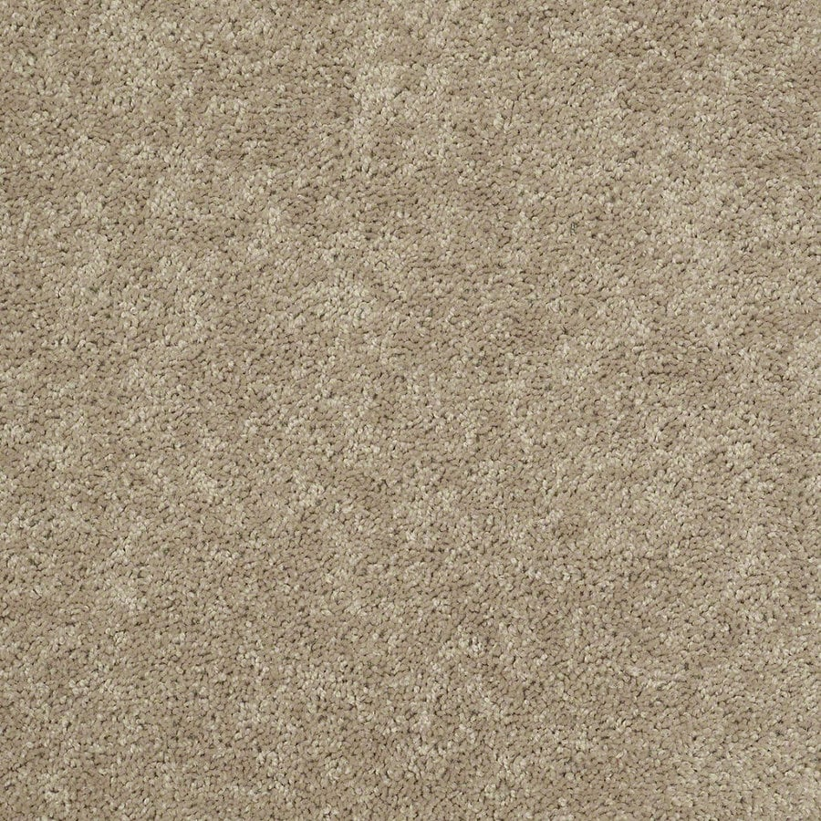Shaw Batter Up I 12-ft W x Cut-to-Length Honeycomb Textured Interior Carpet