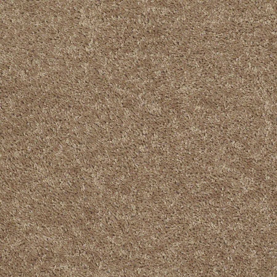 Shaw Batter Up I 12-ft W x Cut-to-Length Golden Echoes Textured Interior Carpet