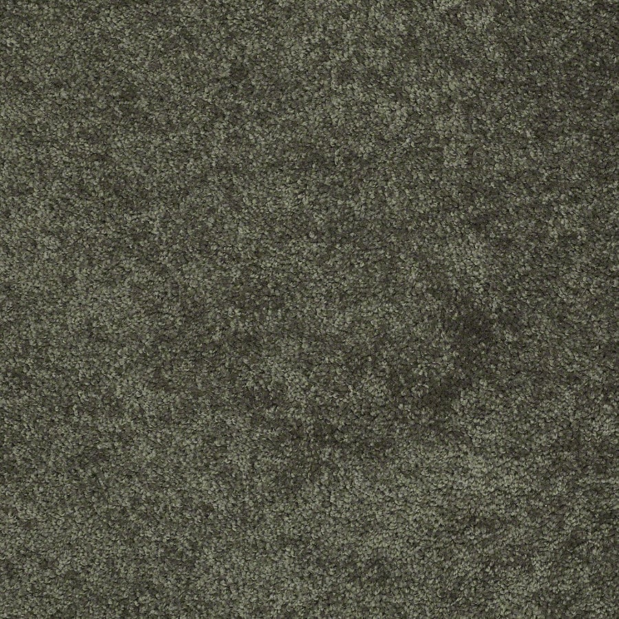 Shaw Batter Up I 12-ft W x Cut-to-Length Garden Grove Textured Interior Carpet