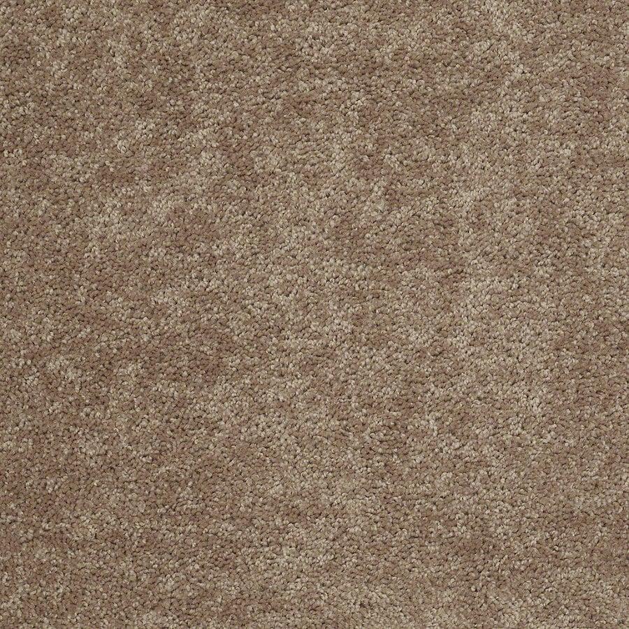 Shaw Batter Up I Taffy Textured Interior Carpet