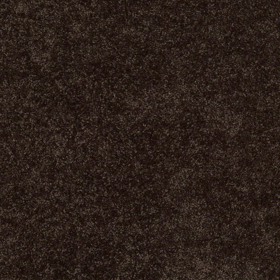 Shaw Batter Up I 12-ft W x Cut-to-Length Coffee Bean Textured Interior Carpet