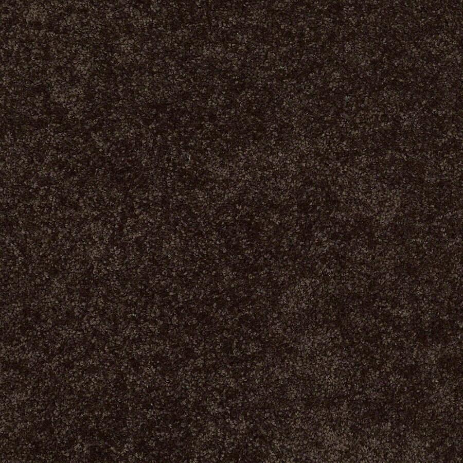 Shaw Batter Up I Coffee Bean Textured Interior Carpet