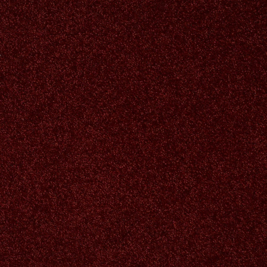 Shaw Batter Up I 12-ft W Red Wine Textured Interior Carpet