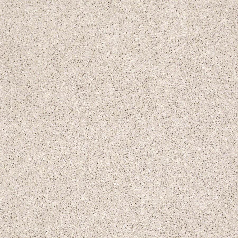 Shaw Batter Up I 15-ft W x Cut-to-Length Butter Cream Textured Interior Carpet